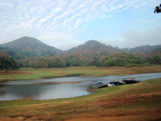 Cardamom County: Periyar Tiger Reserve - Morning
