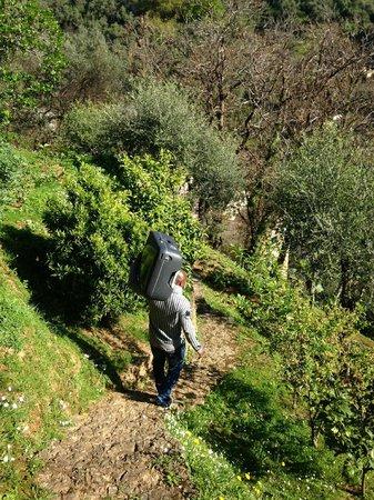 B&B Tre Mari Portofino: Bärhjälp för en hundra branta trapporna