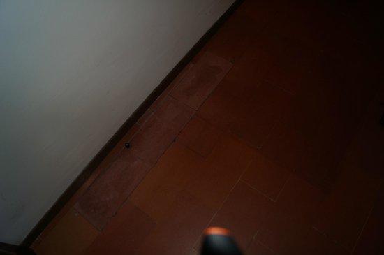 Palazzo Ricasoli Residence: pavimenti un po' datati ma adatti all'ambiente rustico