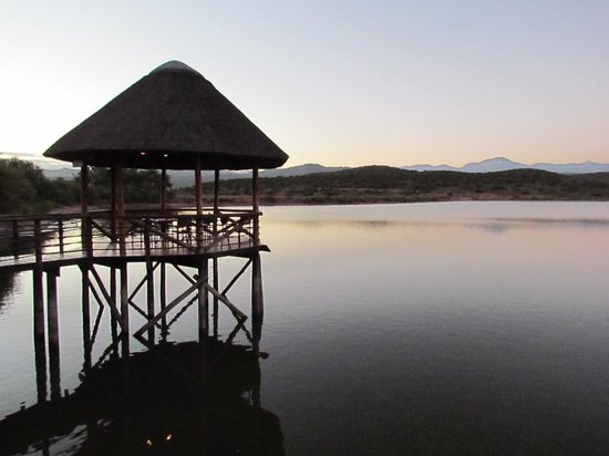 Buffelsdrift Game Lodge Restaurant : View from our table
