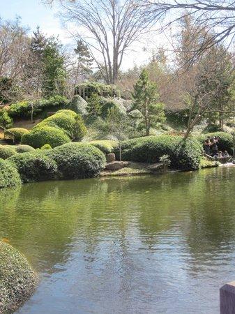 Lots Of Vegetation Picture Of Fort Worth Botanic Garden Fort Worth Tripadvisor