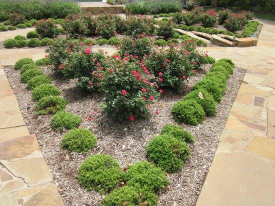 Lots Of Vegetation Picture Of Fort Worth Botanic Garden