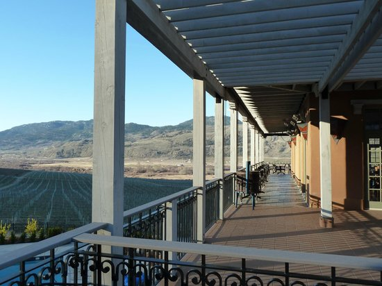 Burrowing Owl Estate Winery Guest House : View from restaurant terrace