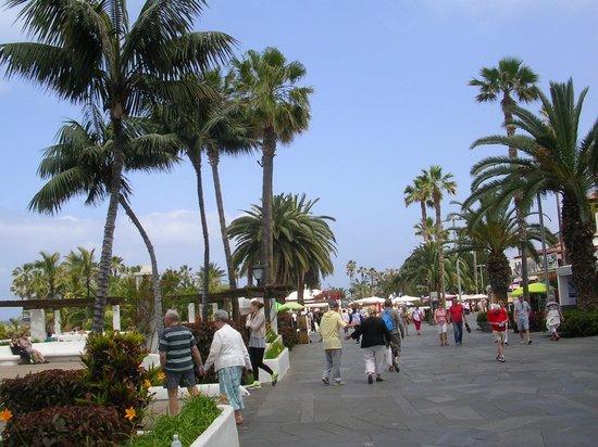 Bahia Principe San Felipe: The Promenade
