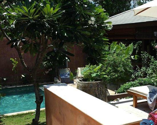 Alanta Villa: Beautiful villa garden