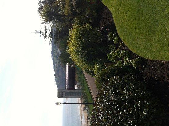 Carlton Hotel: Garden view