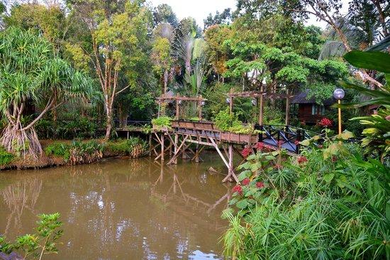 Sepilok Nature Resort: Gardens with one of the bridges