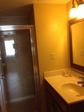 Wyndham Bonnet Creek Resort: Shower in master bath
