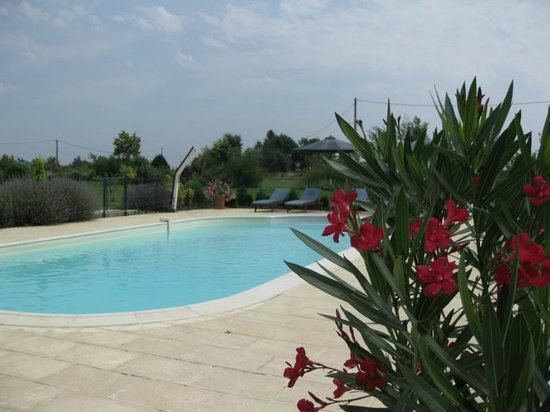 Les Petites Cigognes: Plenty of space around the pool
