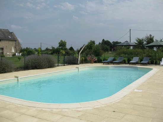 Les Petites Cigognes: The pool is large enough for swimming and games or just relaxing