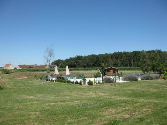 Les Petites Cigognes : View across the pool and fields
