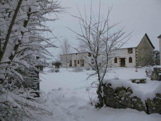 Les Petites Cigognes in Winter
