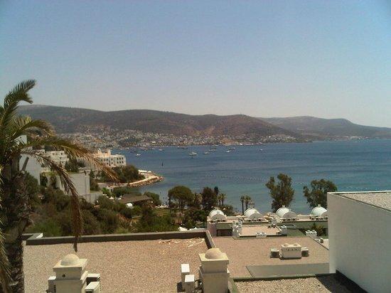 Salmakis Resort & Spa: Sea View