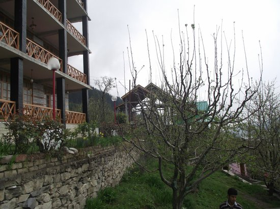 Naina Resort & Cottages : Outside area of resort