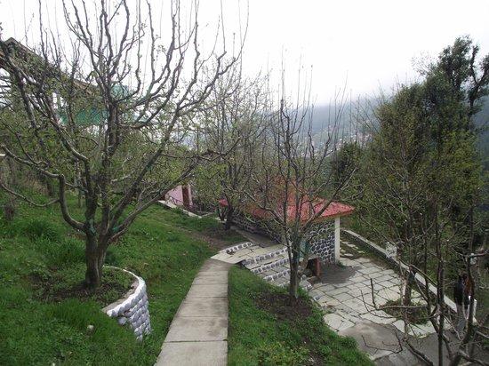 Naina Resort & Cottages : Outside area
