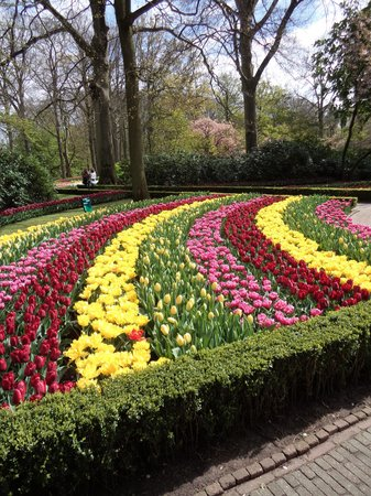 Keukenhof: Tulips and more!