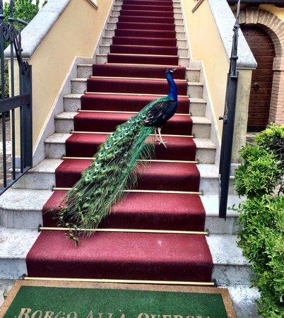 Ristorante Borgo alla Quercia : Самое место на красной дорожке ему)