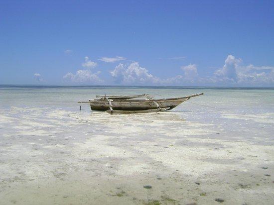 Dream of Zanzibar: Dhow on beach