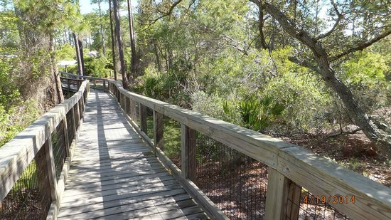 Big Lagoon State Park: boardwalk to camp sites