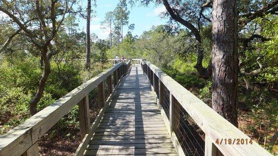 Big Lagoon State Park: Boardwalk across Long Pond