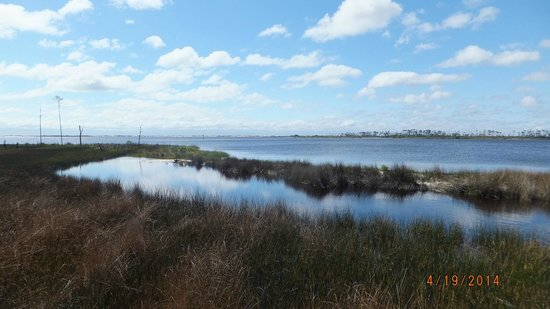 Big Lagoon State Park : between West Beach and East Beach areas