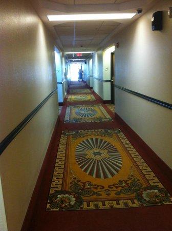 La Quinta Inn & Suites Orlando Universal Area: pasilo de entrada y salida
