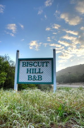 Equinox Inn at Biscuit Hill : Entrance sign on dewey morning.