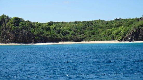 Cacimba do Padre Beach: A praia vista do barco