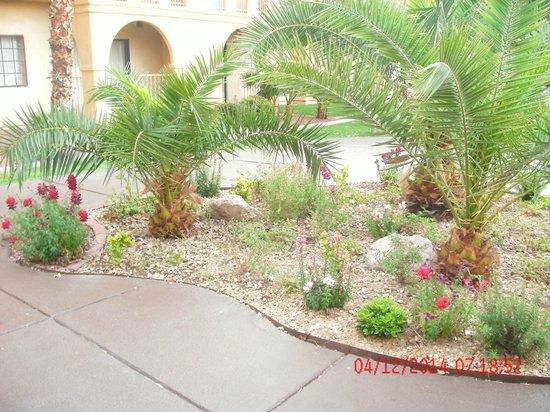 La Quinta Inn & Suites Las Vegas Airport N Conv.: hotels & gruonds