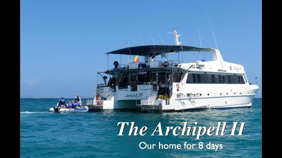 Galapagos Natural Life - Day Tours: archipel ll