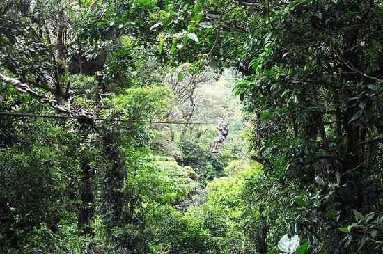 Parque Selvatura: Zip lining in Selvatura Park
