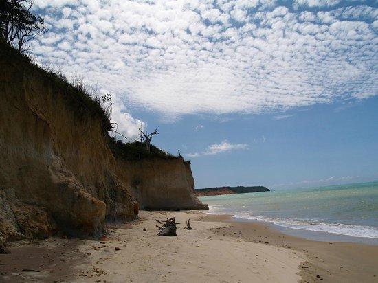 Praia do Carro Quebrado: Falésias,praia deserta, mar maravilhoso, linda!!