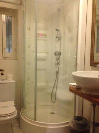 "Hotel Amadeus: ""Beethoven"" Bathroom- nice shower!"