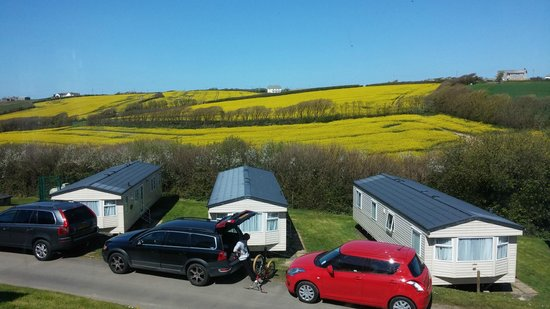 Widemouth Bay Caravan Park: View from lounge window