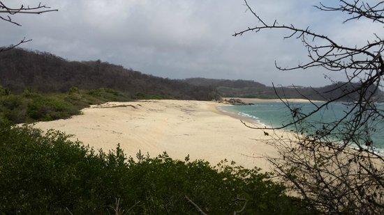 Agua Azul La Villa: Дикий пляж