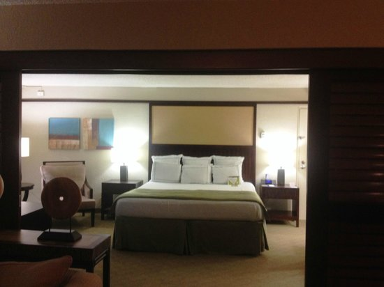 Doubletree by Hilton Orlando at SeaWorld: another view of the king room