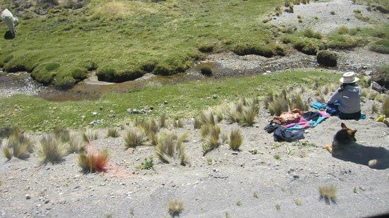 Salinas y Aguada Blanca National Reserve: aguad ablanca