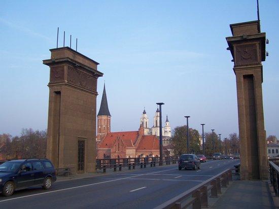 Vytautas the Great Bridge (Aleksotas Bridge): le pont