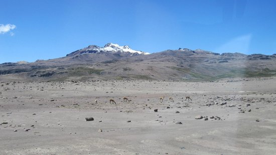Salinas y Aguada Blanca National Reserve: aguada blanca