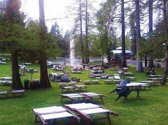 Parco Termale del Garda: Parco e lettini