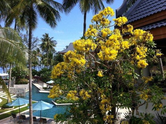 Outrigger Laguna Phuket Beach Resort : Panorama dalla reception