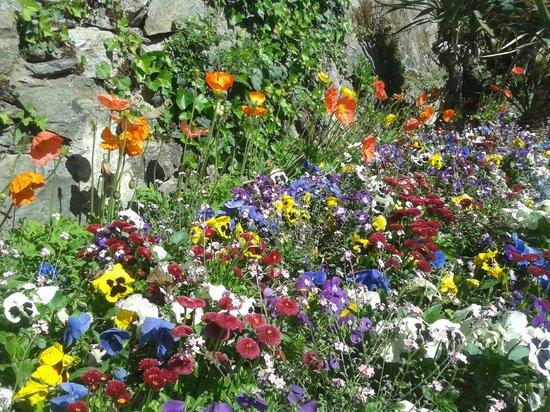 Aiuole fiorite foto di passeggiata tappeiner merano for Aiuole fiorite immagini