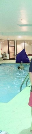 Holiday Inn Washington College Park: Small Pool