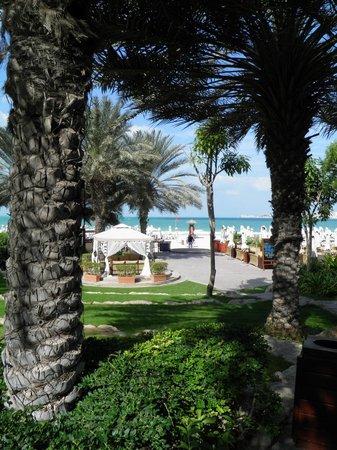 Hilton Dubai Jumeirah : jardin entre piscine et plage