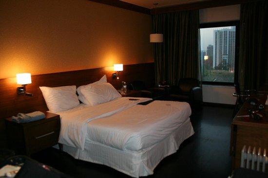 Le Meridien New Delhi: room 1102