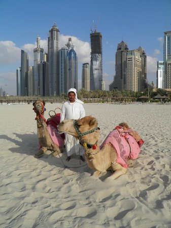 Hilton Dubai Jumeirah: balade sur la plage