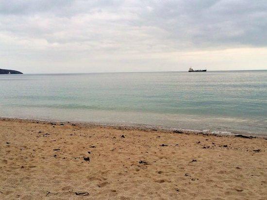 St Michael's Hotel & Spa: Gyllyngvase beach