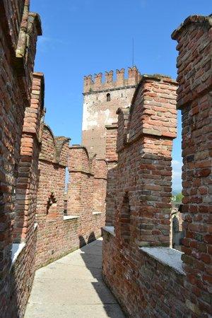 Museo di Castelvecchio: walking outside