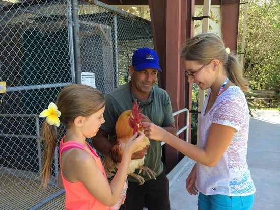 Lloyd's Tropical Bike Tour: Lloyd shows off Charlie to my daughters
