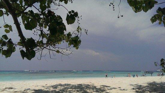 Ko Tachai Island: White sand and sunny beach